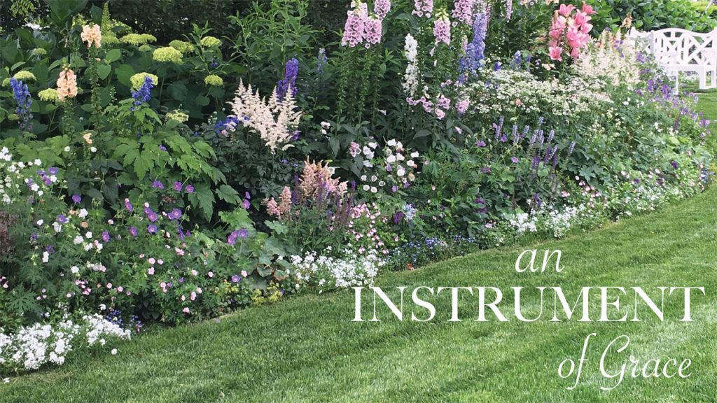 nantucket gardening