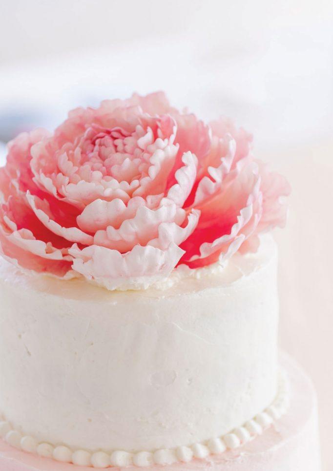 nantucket-island-ack-visit-travel-Post-Wedding-wedding-cakes-Zofia-Co-14-682x1024