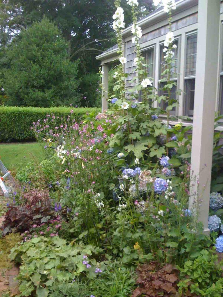 Deborah Wilson Nantucket Garden Designer