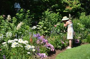 Garden Tour with Katie Hemingway of Grass Roots