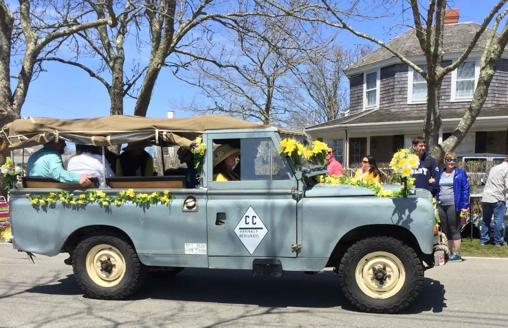 daffodil parade nantucket