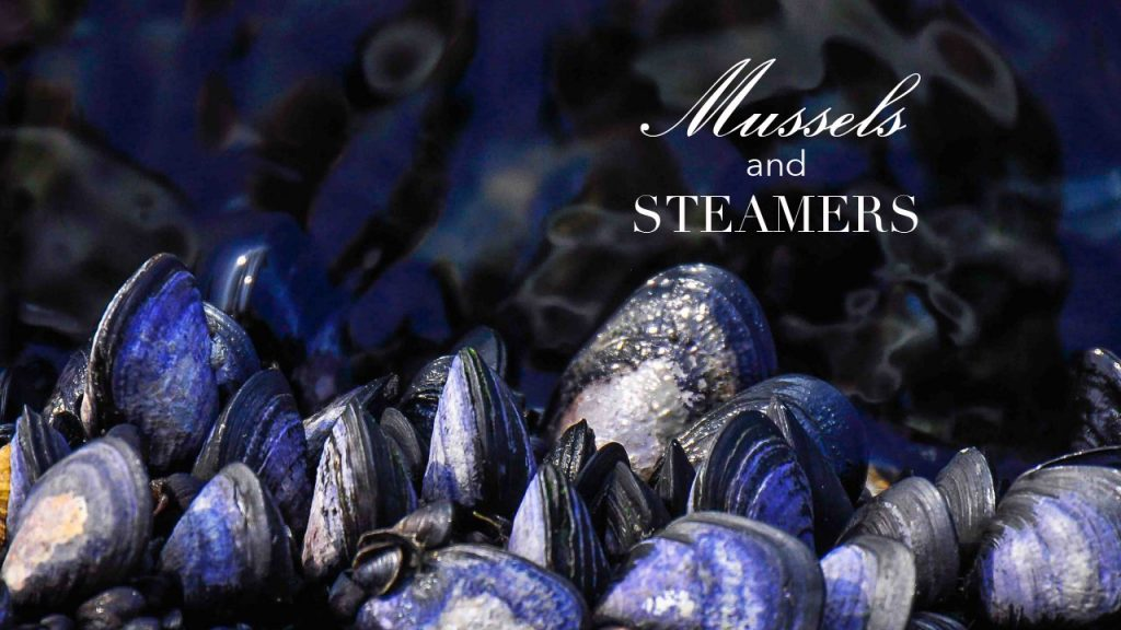 mussels-nantucket-fine-dining