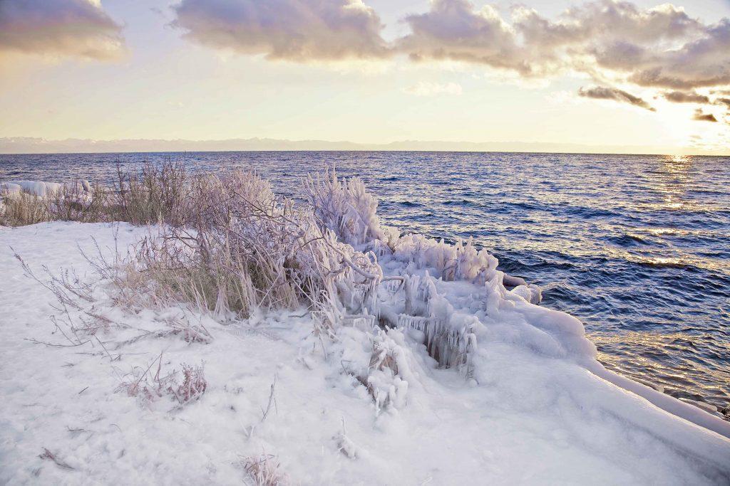 Nantucket Winter Beach