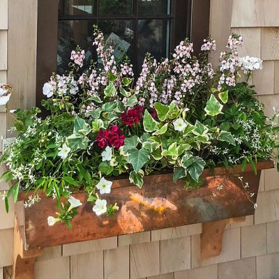 Nantucket Flower Boxes
