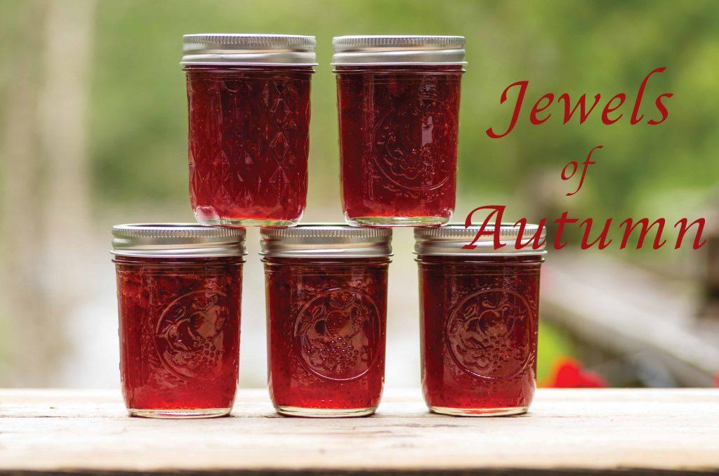 jams of nantucket for fall