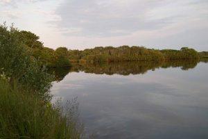 nantucket wetlands