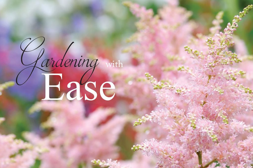 nantucket easy gardening